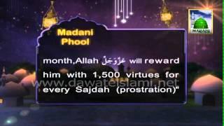 Hadees Mubarak - Blessings of Every Night of Ramadan