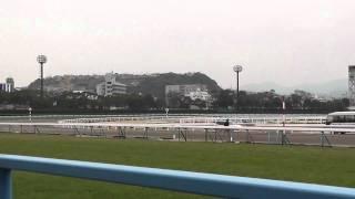 2011年1月23日 小倉11R 愛馬が出走しました。