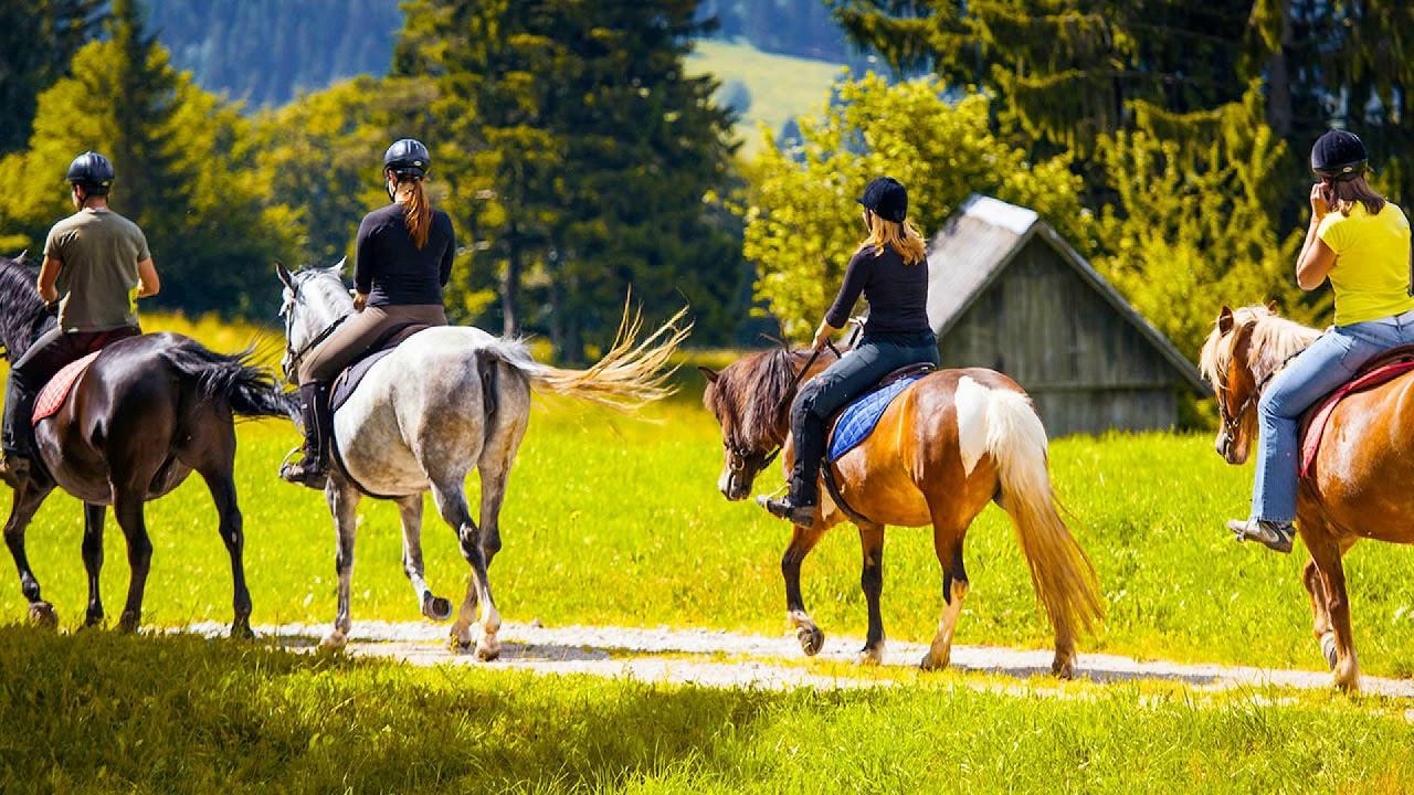 катание на лошадях простатит