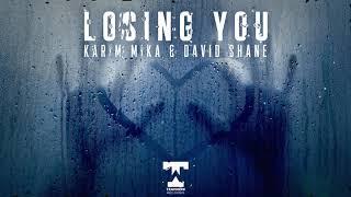 Karim Mika, David Shane - Losing You