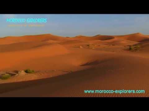 Erg Chebbi - Sahara desert, dunes and Gnawa musicians, absolute bliss!