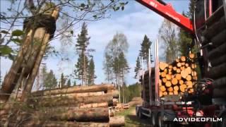 Загрузка лесовоза с помощью лесного манипулятора Loglift 105 S