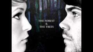 The Forest & The Trees - Run