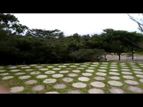Tagum City Botanical Park - Tagum City, Davao del Norte