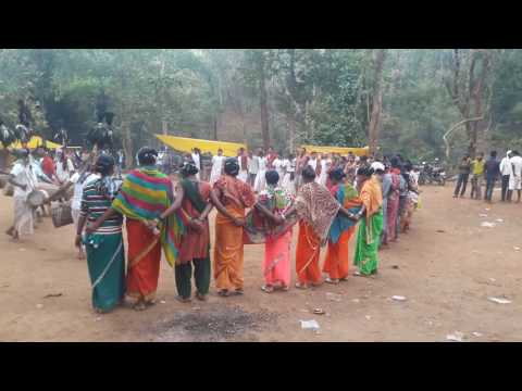 Real Tribal dance, Tribal culture.. Gondi songs|||