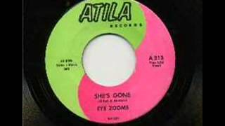 The Eye Zooms   She´s Gone 1966