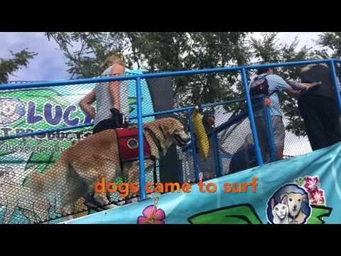 Shelter Hope Pet Shop Celebrates 5th Year Anniversary!