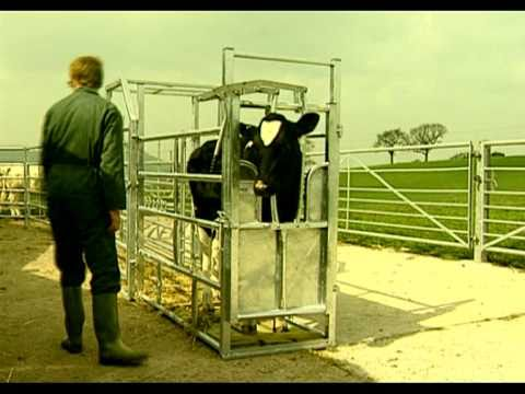 Cattle Handling Equipment By Priefert How To Save Money