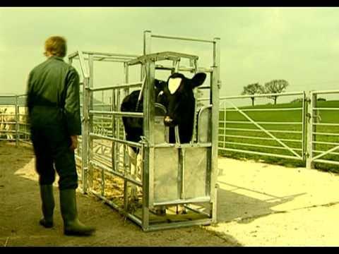 IAE Livestock Equipment | Mole Valley Farmers