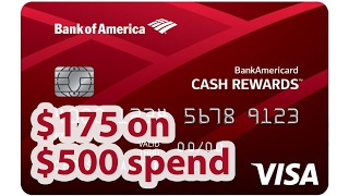 Awesome Cash Bonus from BofA Cash Rewards | BeatTheBush