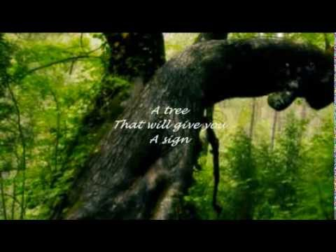 HENRY MANCINI - THE SWEETHEART TREE