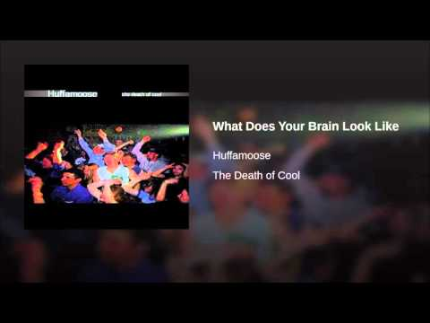 What Does Your Brain Look Like