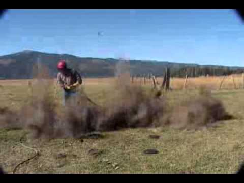 Pocket Gophers being blown away by the Rodenator Pro