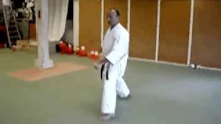 PINAN NIDAN (Shito Ryu Karate Do Kata)