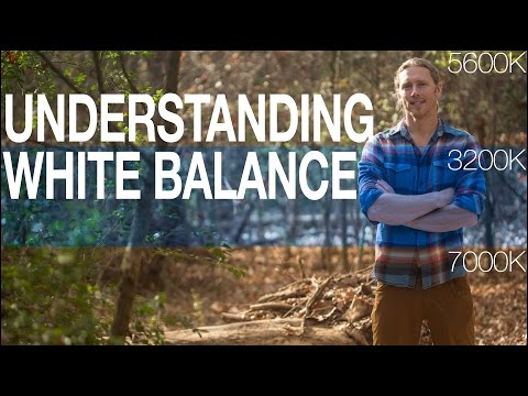 White Balance Basics: What is color temperature and why do we need to know?