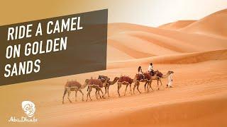 Take a trip to the desert landscape of Abu Dhabi | Visit Abu Dhabi