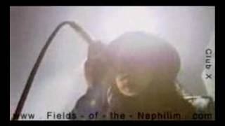 Fields of the Nephilim  The Watchman
