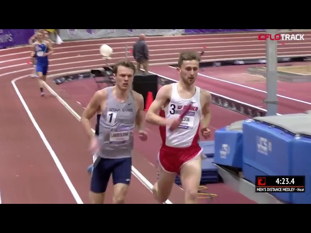 Josh Kerr Leads New Mexico DMR #1 In NCAA! | Tasty Race of the Week