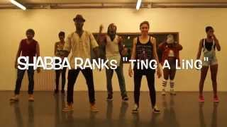 Dancehall Master®, Camron One-Shot, Shabba Ranks Ting a Ling