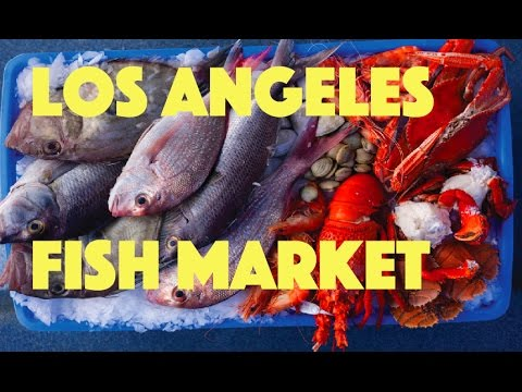 Los angeles fish market youtube for San pedro fish count