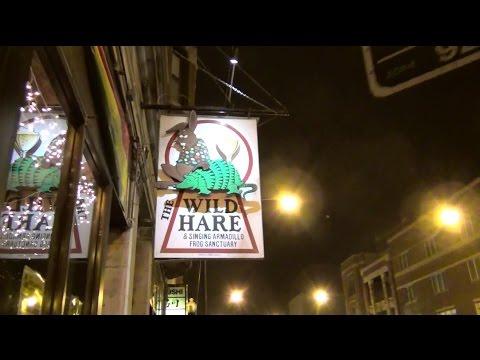 Wild Hare Reggae Club Tour - Chicago 12/18/2014