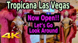 TROPICANA LAS VEGAS STRIP REOPENING in 4K - Let's Go Check It Out!!