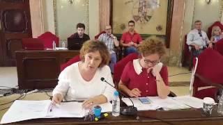 Pleno mayo 2017- Junta de Hacendados