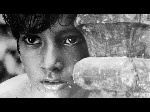 Camera Angles and Movement: Pather Panchali