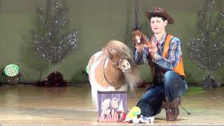 Ковбой и минилошадка. Цирк на сцене. Тула ЦКЗ. Cowboy and performing minihorse.