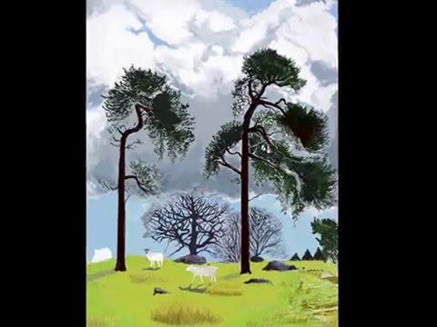 Scots pines at Longshaw