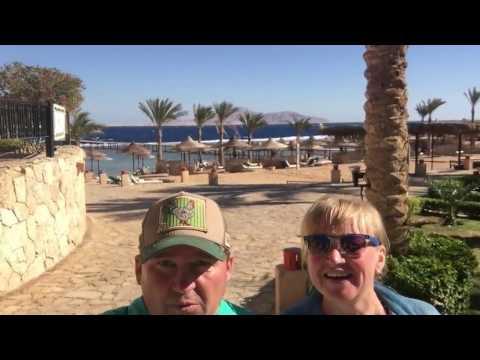 TAMRA BEACH 31 января 2017 Египет