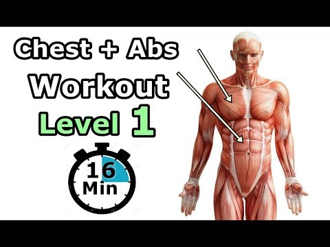 Chest+Abs Workout Level 1| The Best Home Workout (Beginner)