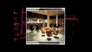 Swan Chair-yadea Furniture Wholesale