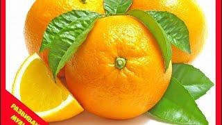 Учим фрукты. развивающие мультики для детей. Милаши Рисоваши