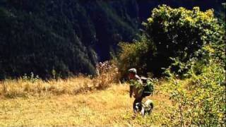 Mountain Animals Alps - Animaux montagnes Alpes
