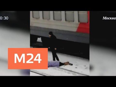 Электричка сбила девушку недалеко от Белорусского вокзала - Москва 24