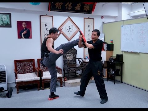 Wing Chun Sharings - Sifu Donald Mak 麥廣權師傅:詠春應用分享