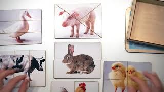 Разрезные картинки. Пазлы. Домашние животные. Smile Decor (Смайл Декор)