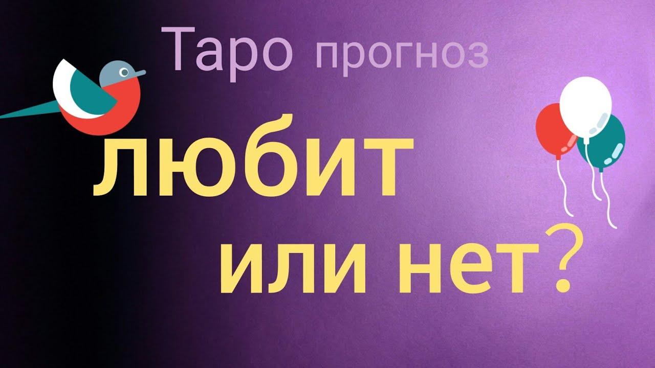 Любит или нет гадание таро русская школа гадания на картах