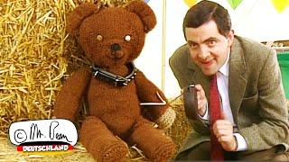 Wird Teddy die Show gewinnen?