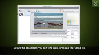 Aura Video Converter - Convert video files between multiple formats - Download Video Previews
