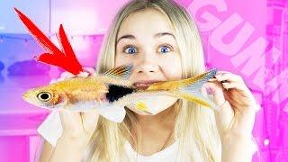 СЪЕЛА ЖИВУЮ РЫБУ! Обычная Еда против Мармелада Челлендж!  Real Food vs Gummy Food!