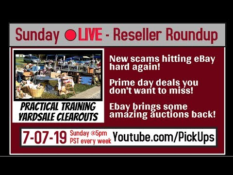 Reseller Roundup 7-7-19 - Yardsale Clearout for Profit Q&A | Prime Day Details | eBay Auctions
