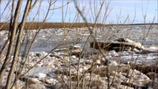 Ледоход на реке Мезень  Май 2014 год(, 2014-08-06T23:00:16.000Z)