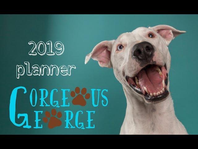 Gorgeous George 2019 Planner