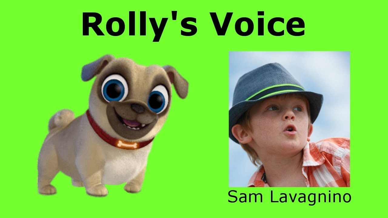 PUPPY DOG PALS Characters REAL VOICES 2019 Rolly Bingo Bob Hissy A.R.F and Keia
