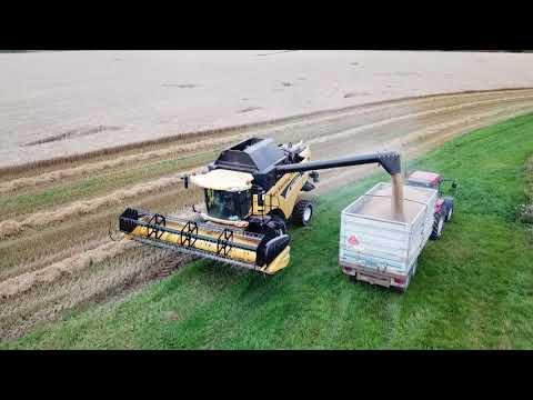 Harvest in Dalsland