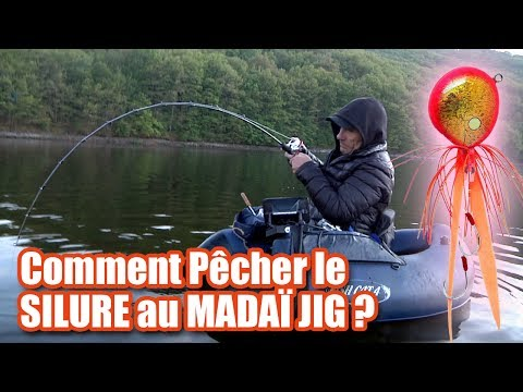 Comment Pêcher le SILURE au...