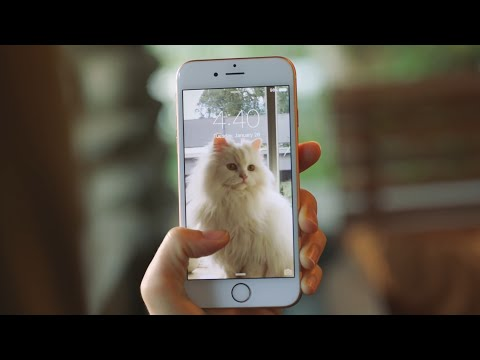 How to do motion pictures on iphone 7