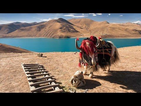 Rural Tibetan family lives through past & future